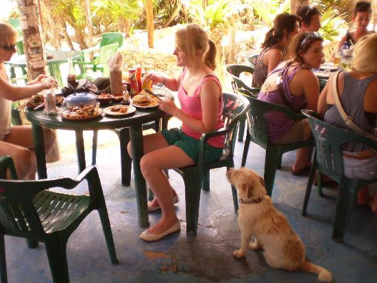 Cozumel, Mexico: Coconuts, my daughter and Luna the bar hound