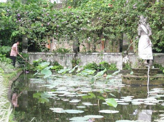 Museum Puri Lukisan: Tranquil Museum Gardens