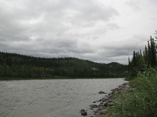 Denali Park Village: View of river behind hotel.