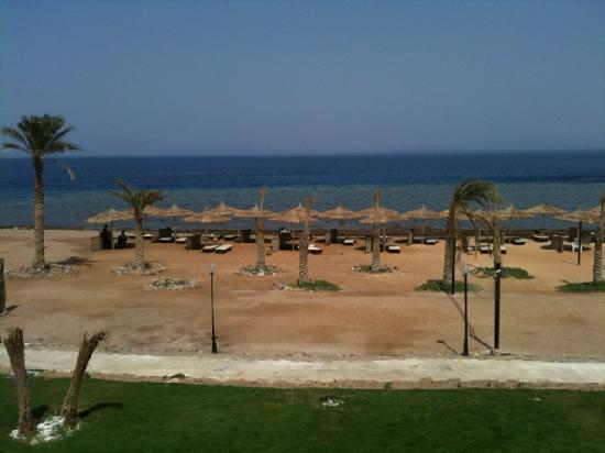 Sea Sun Hotel Dahab: View from our balcony