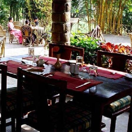 Hotel Tiger Camp: Dinning Area