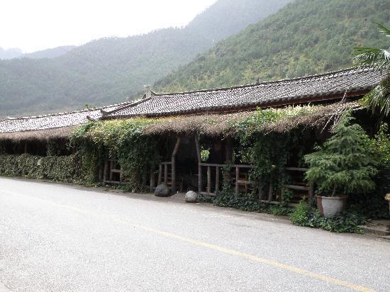 Jiang Yu Tan : Front View
