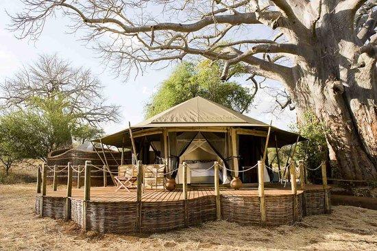 Sanctuary Swala
