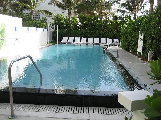 The Small Swimming Pool Picture Of W South Beach Miami Beach