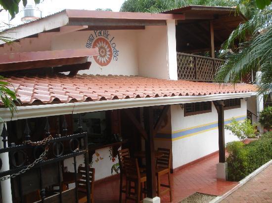 Hotel Samara Pacific Lodge: le bar