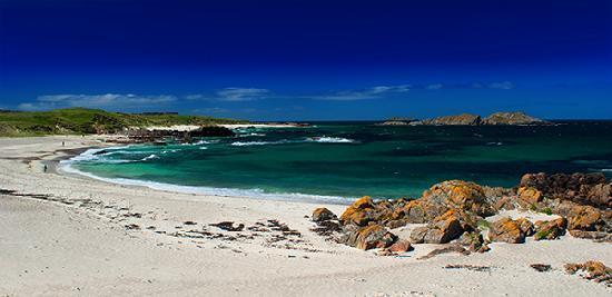 Seaview Bed & Breakfast: Iona North shore