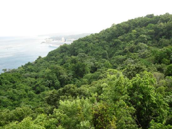 Ocho Rios, Jamaika: View from chair lift at Mystic Mountain