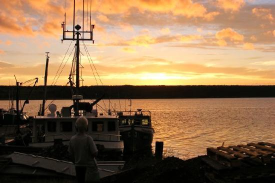Cheticamp, Kanada: Walk a few yards across the street and enjoy harbor sunsets
