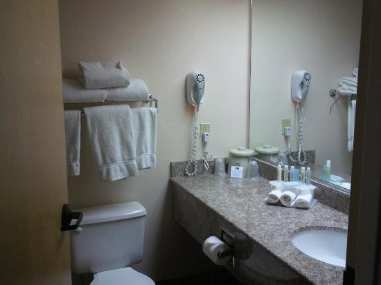 Holiday Inn Express Silver City: Bathroom
