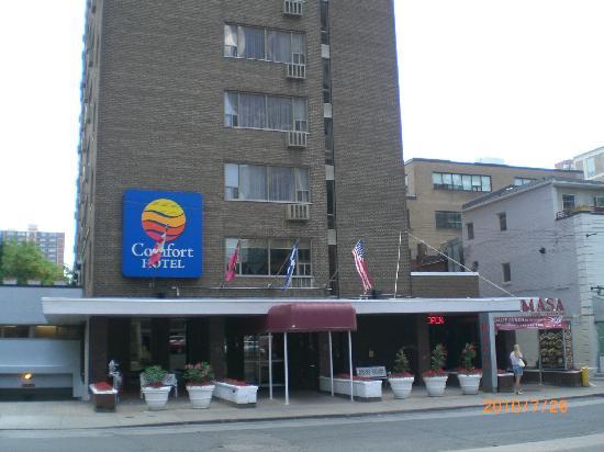 Comfort Hotel Downtown Toronto On My S