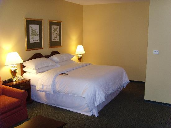 St. Louis City Center Hotel: Club level room 848
