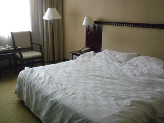 Vienna Hotel Huizhou Maidi: 部屋の様子。新しい感じはないです
