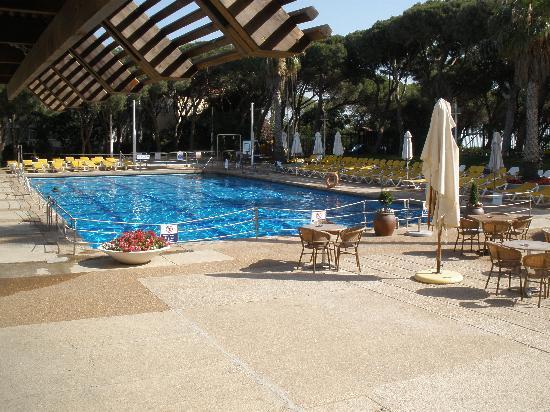 Dan Carmel Haifa : Beautiful Hotel Pool
