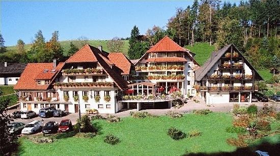 Wolfach - St. Roman, ألمانيا: Hotel Ansicht