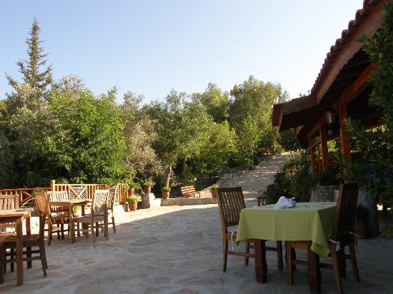 Ocakkoy Holiday Village: The  restaurant