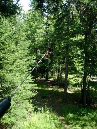 Moncton, Canada: zipline through the trees