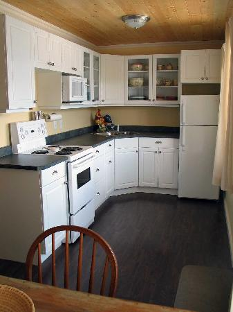 Lakeview Motel & Suites: kitchen unit