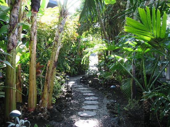 Kona Sugar Shack: a lovely pathway