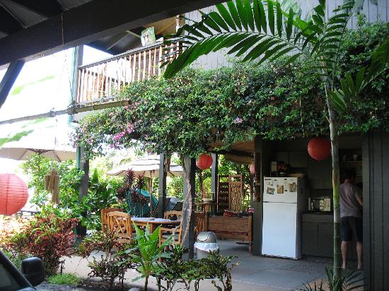 Kona Sugar Shack: outdoor kitchen and grounds