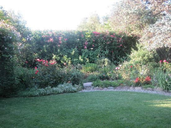 Ranch House: the garden view