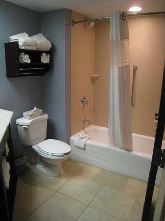 Hampton Inn Kansas City Liberty : Bathroom, Notice how high the shower head is.