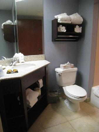 Hampton Inn Kansas City Liberty : HIgh counter top in the spacious bathroom