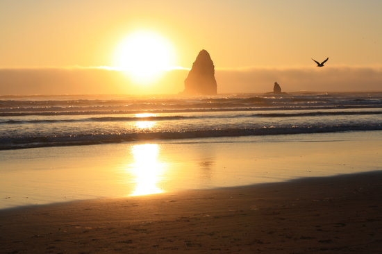 Cannon Beach, OR: Sunset