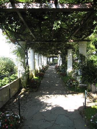 Villa San Michele: Garden
