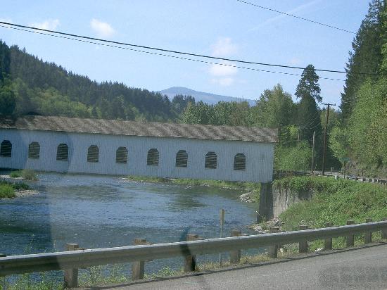 Eugene, OR: ドライブ中に見つけた橋
