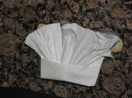 Holiday Inn Express Hotel & Suites Tucson Mall: Even the kleenex was folded into a fan!