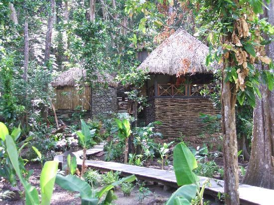 Qamea Island, Fiji: QaNnea jungle spa exterior