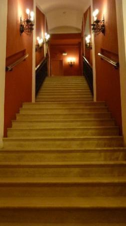 Hotel Regina: Nur ein Lift im Hause , längeres warten , oder wir mußten diese steile Treppe nehmen