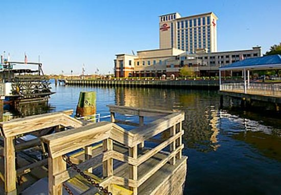Renaissance Portsmouth-Norfolk Waterfront Hotel: Harbor view of the Elizabeth River
