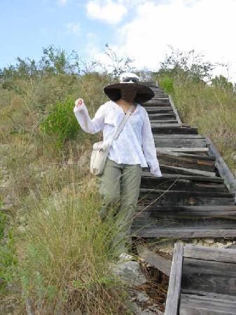 Monte Cristi National Park (Parque Nacional Monte Cristi): l'enfer de la descente...