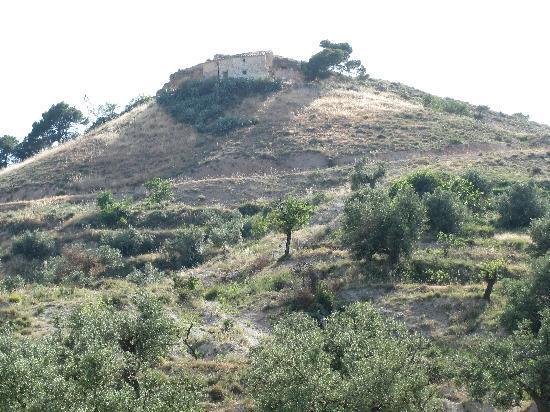 Casa Scolares: The View