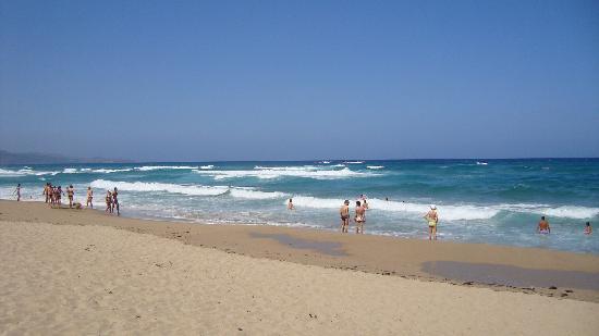 Resort & Spa Le Dune: Spiaggia del Resort