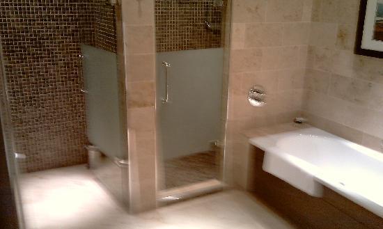 Lough Eske Castle, a Solis Hotel & Spa: bathroom  seperate walk in shower