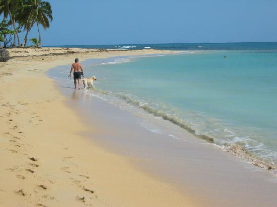 Hotel Albachiara : la spiaggia Poppi