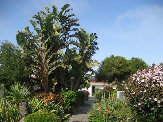 Alte Brucke: Resort garden