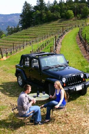 Tour Napa mountain wine appellations - Picture of Hidden Napa Jeep