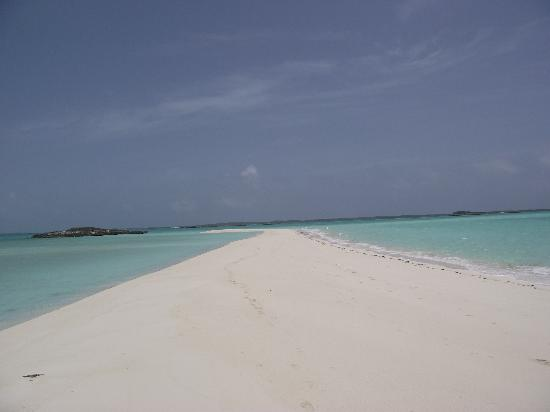 Staniel Cay Yacht Club : sandy cay