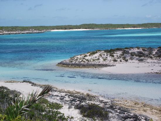 Staniel Cay Yacht Club : staniel cay