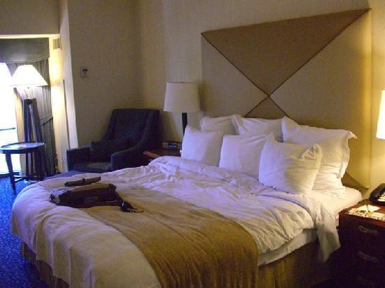 Marriott Hotel Rooms
