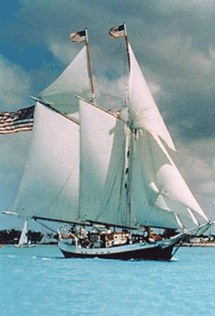 Liberty Fleet of Tall Ships: Full Sail