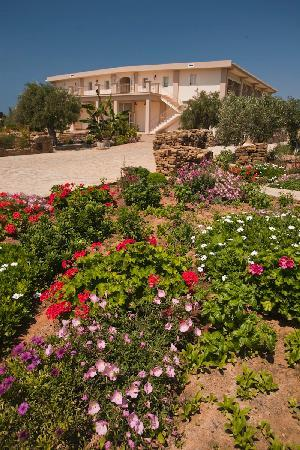 Gialova, Greece: The garden of Hotel Zoe