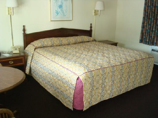 Days Inn West Yarmouth/Hyannis Cape Cod Area: Clean and Comfy King beds