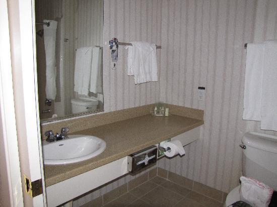 Holiday Inn Selma-Swan Court: Bathroom