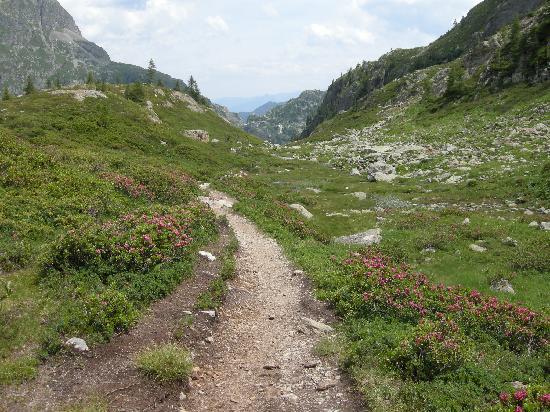 Alpine Comfort: Worth the effort to get up here!