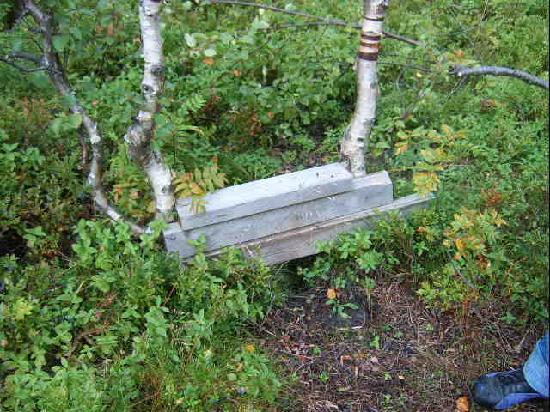 Harstad, Norway: Who knows what to do?