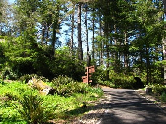 Inn at Otter Crest: Peaceful Nature Trails